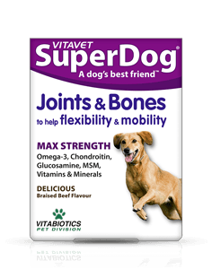 SuperDog Joints & Bones